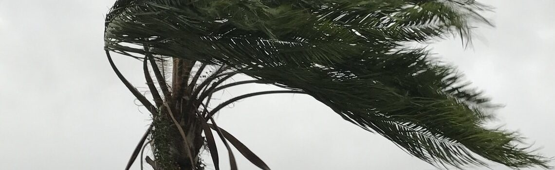 Hurricane Insurance Coverage Gale Force Winds